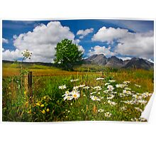 Blaven, and Summer Flowers, Torrin, Isle Of Skye, Scotland. Poster