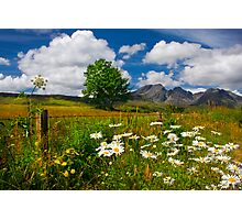 Blaven, and Summer Flowers, Torrin, Isle Of Skye, Scotland. Photographic Print