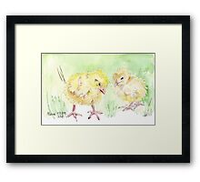 Solly's chicks Framed Print