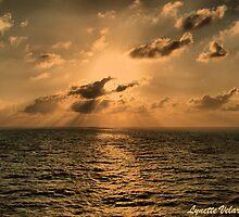 Caribbean Sunset by Bernai Velarde