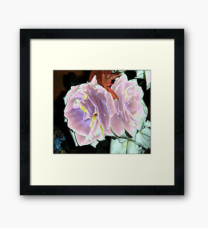Velveted Roses Framed Print