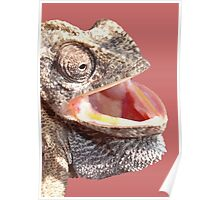 Chameleon with Happy Smiling Expression Vector Poster