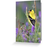 Pastel Beauty Greeting Card