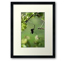 Saying Goodbye  Framed Print