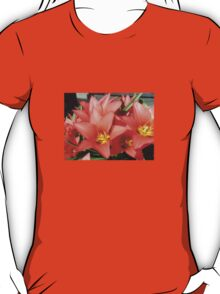 Tulips in april T-Shirt