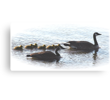 The Mr Canada Goose Family Canvas Print