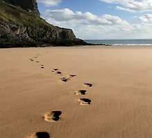 Footsteps in the sand by Anthony Thomas