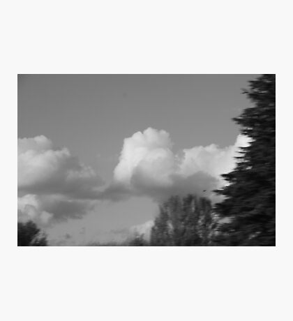 air born Photographic Print