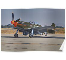"P-51D ""Speedball Alice"" Poster"