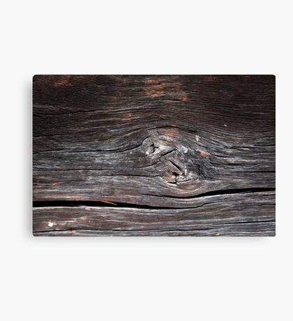 Abstract wood background  Canvas Print