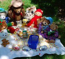 Baldur & His Pals at the Annual Teddy Bears Picnic! by Carol Clifford
