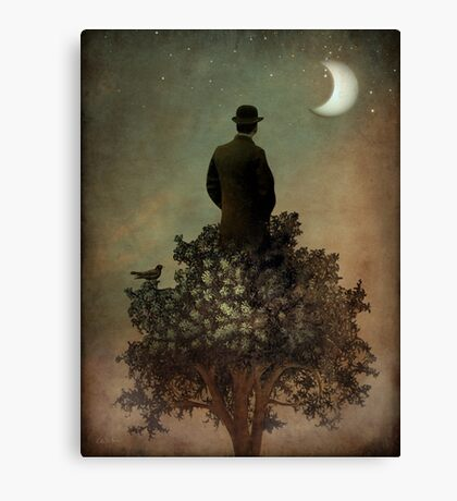 Man in tree Canvas Print