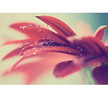 Comfort & Rain Photographic Print
