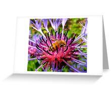 Barb-Bee Greeting Card