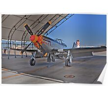 """P-51D Mustang """"Wee Willie II"""" at El Centro 2009 Poster"""