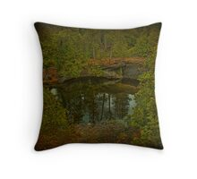 Narcissus Mirror Throw Pillow