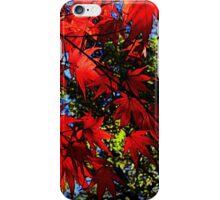 Maple In Bloom iPhone Case/Skin