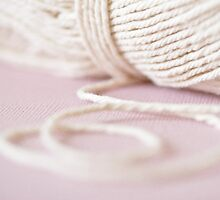Wool by Evelyn Flint - Daydreaming Images