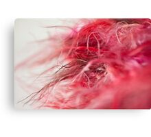Hot Pink & Red Scarf Canvas Print