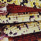 Colorful Maize by June Tapia