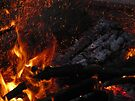 Fire Spirits by Veronica Schultz