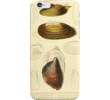 The Animal Kingdom by Georges Cuvier, PA Latreille, and Henry McMurtrie 1834  269 - Mollusca Mollusks iPhone Case/Skin