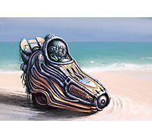 SeaSlug  Photographic Print