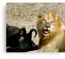 Full lion = Happy lion Canvas Print