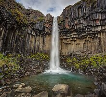 Svartifoss Waterfall by Darren Brown