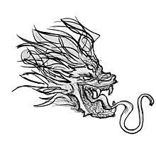 Dragon Doodle Photographic Print