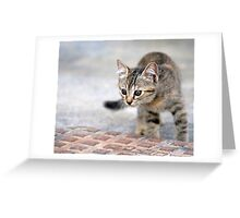 Little Hunter Greeting Card