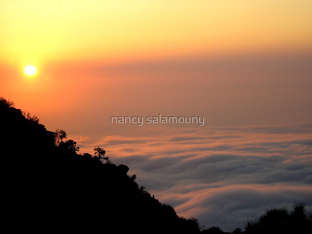 Falling into the Clouds by nancy salamouny