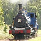 Ravenshoe Steam Train Series - Turning the Locomotive by Caroline Angell