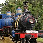 Ravenshoe Steam Train Series - Tumoulin Station Stop by Caroline Angell