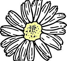 daisies drawing by Aysha121