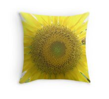 Go Check It Out Throw Pillow