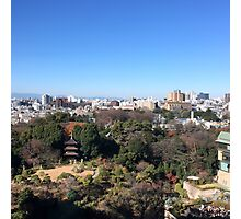 Chinzan-so Garden, December 2014 : Photo Friday at meauxtaku.com Photographic Print