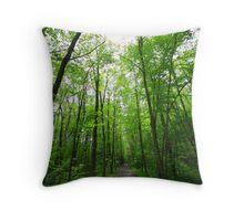 rail trail Throw Pillow