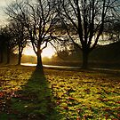 Sunrise in Burnsall, Yorkshire Dales by bobubble