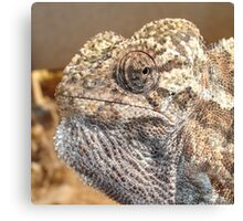 Chameleon With Sinister Facial Expression Canvas Print