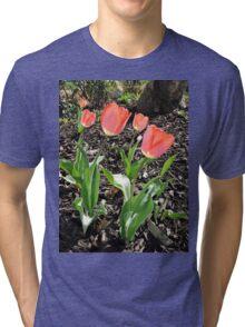 5 Tulips Tri-blend T-Shirt