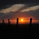 Wire and Fire 3 by Phil Mitchell