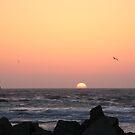 Morro Bay Sunset by expatraveler