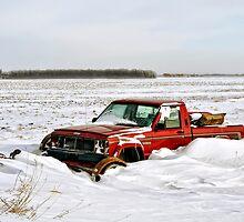 Burried in Snow by Teresa Zieba