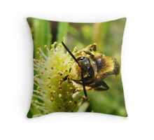 Are You Looking at Bee? Throw Pillow