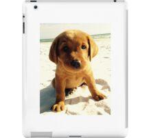 red puppy iPad Case/Skin