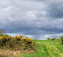 Storm Approaching - Eype Down by Susie Peek