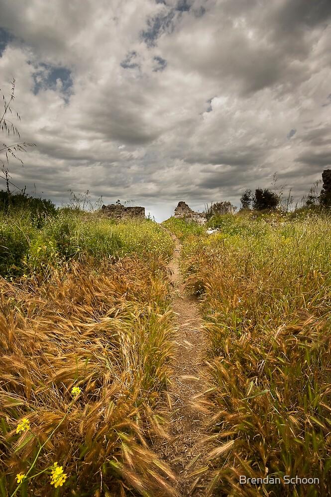 The Golden Road by Brendan Schoon