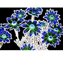 Flower pattern on black Photographic Print