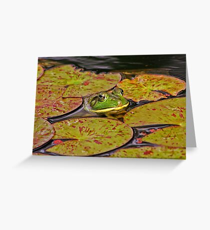 Your Pad or Mine? Greeting Card